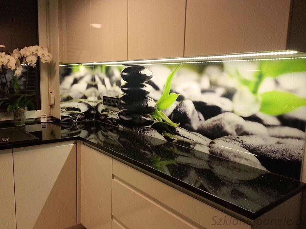 Panel szklany - czarne kamienie i rośliny