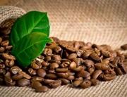 Szklane panele - rozsypana kawa