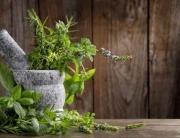 Grafika na szkło - zioła